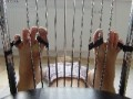 feetloves_111